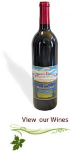 view our wines